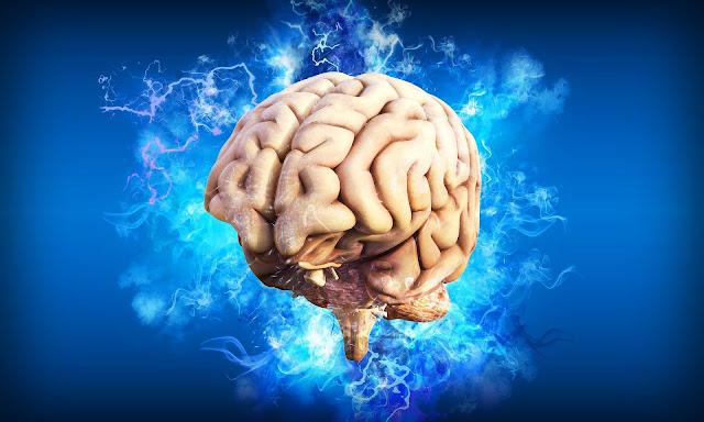ما معنى ليونة الدماغ - ليونة الجهاز العصبي