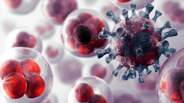 Curar el cáncer de hígado matando células cancerosas