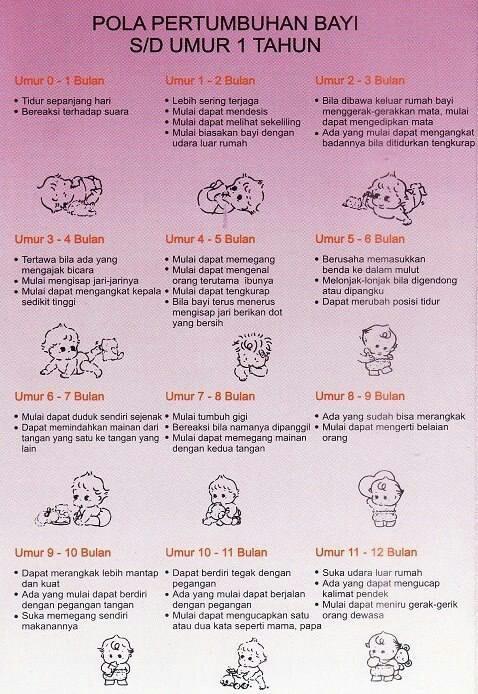 Bayi 8 Bulan Belum Tumbuh Gigi : bulan, belum, tumbuh, Makanan, Pendamping, (MPASI):, Tumbuh, Kembang, Bulan