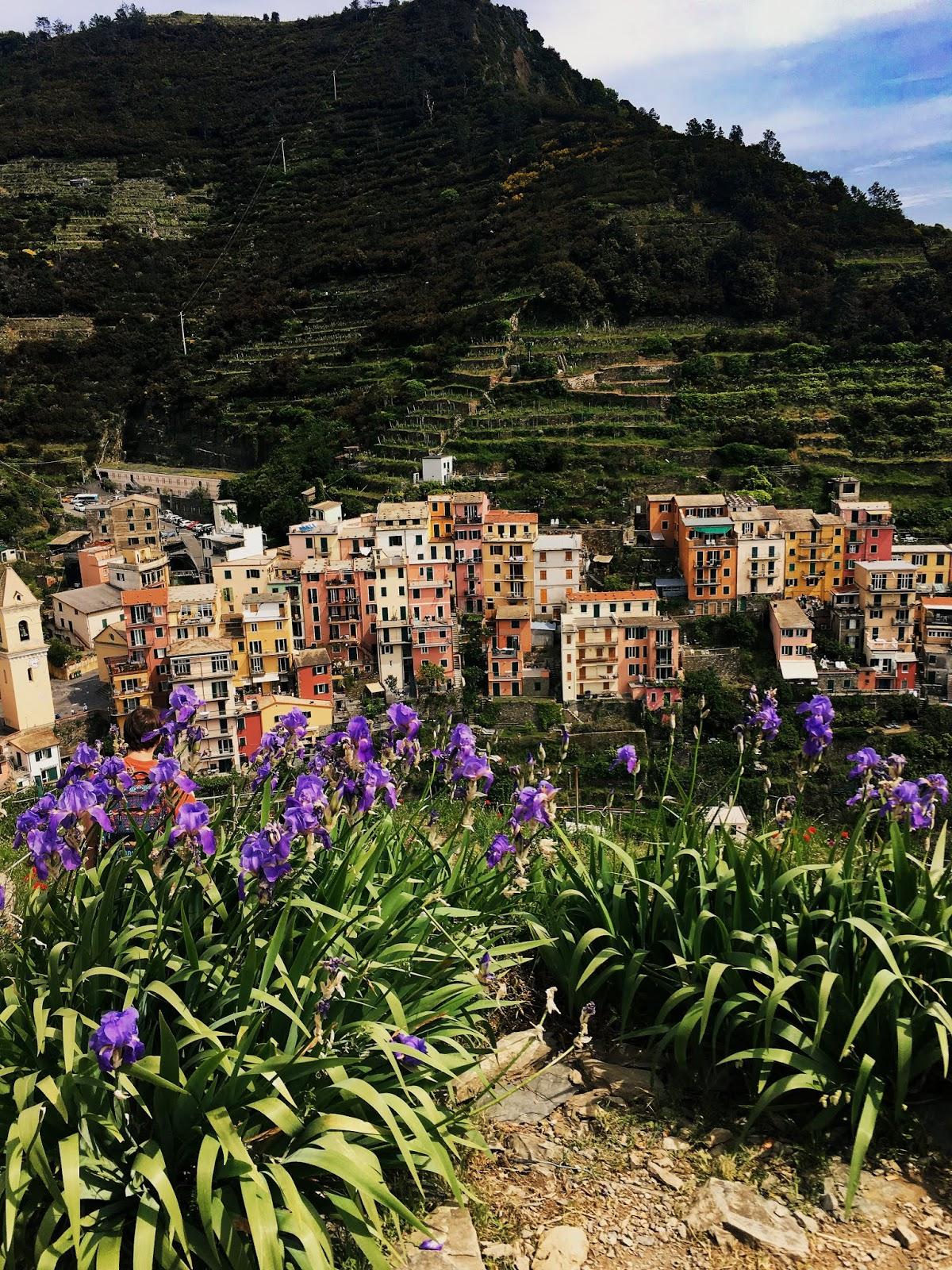 One Day in Cinque Terre, Liguria