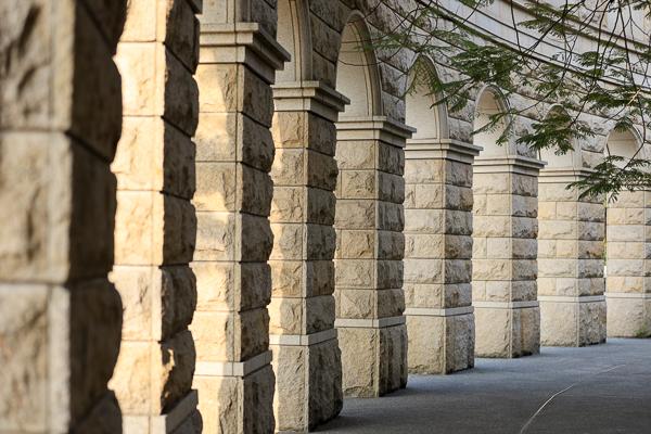台中霧峰亞洲大學杜鵑花盛開,整座校園充滿繽紛色彩好美好好拍