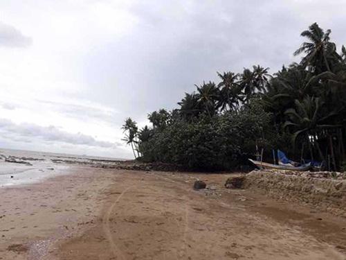 gambar Pantai Kelapa Tuban