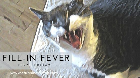 Feral Friday—Fill-in Fever