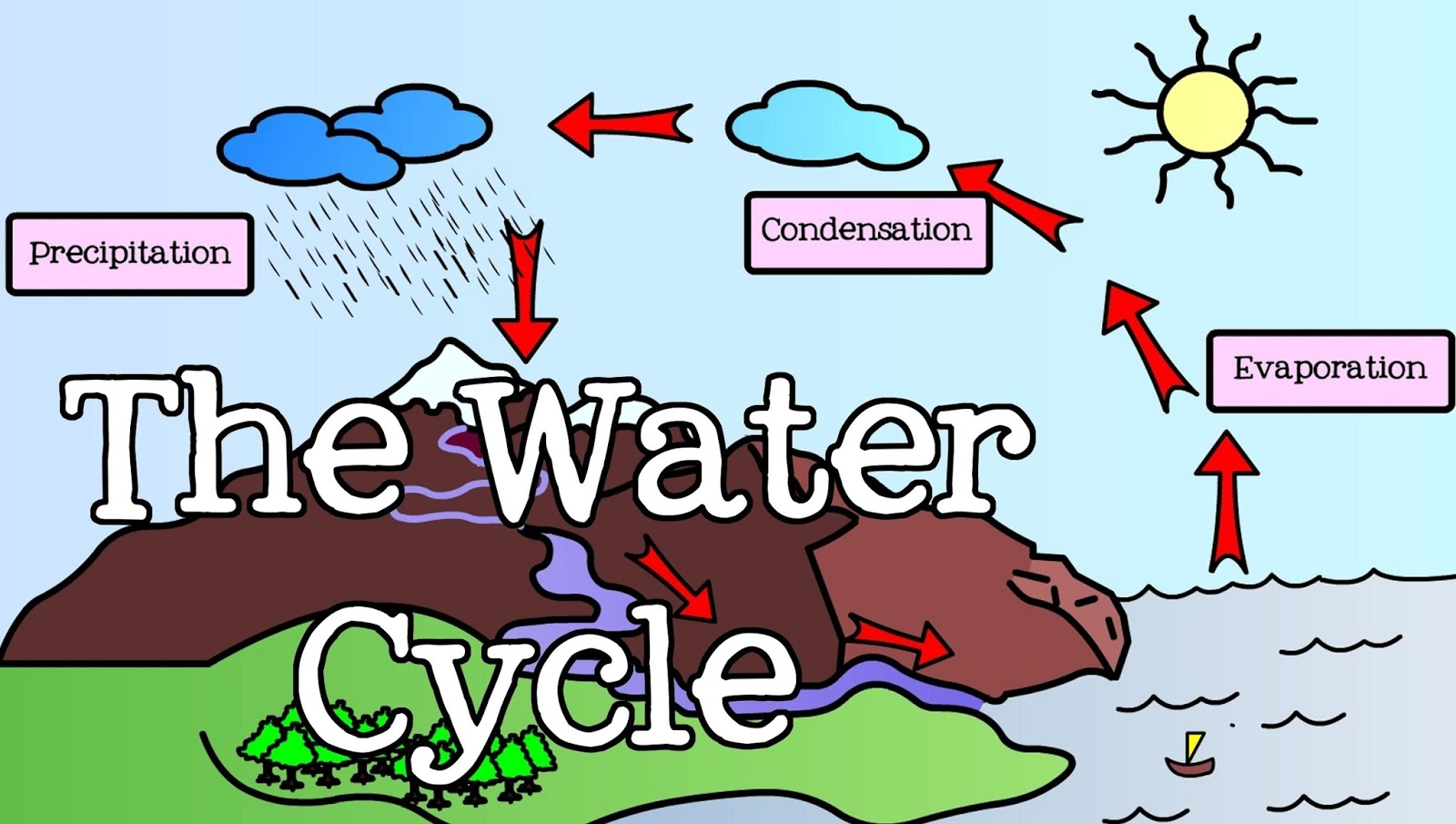 Water Cycle Diagram With Questions Condenser Mic Wiring English Class Monday January 30th 2017 Homework