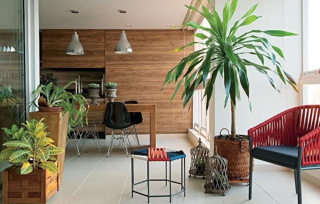 5 segredos infalíveis para uma casa bem arejada com plantas