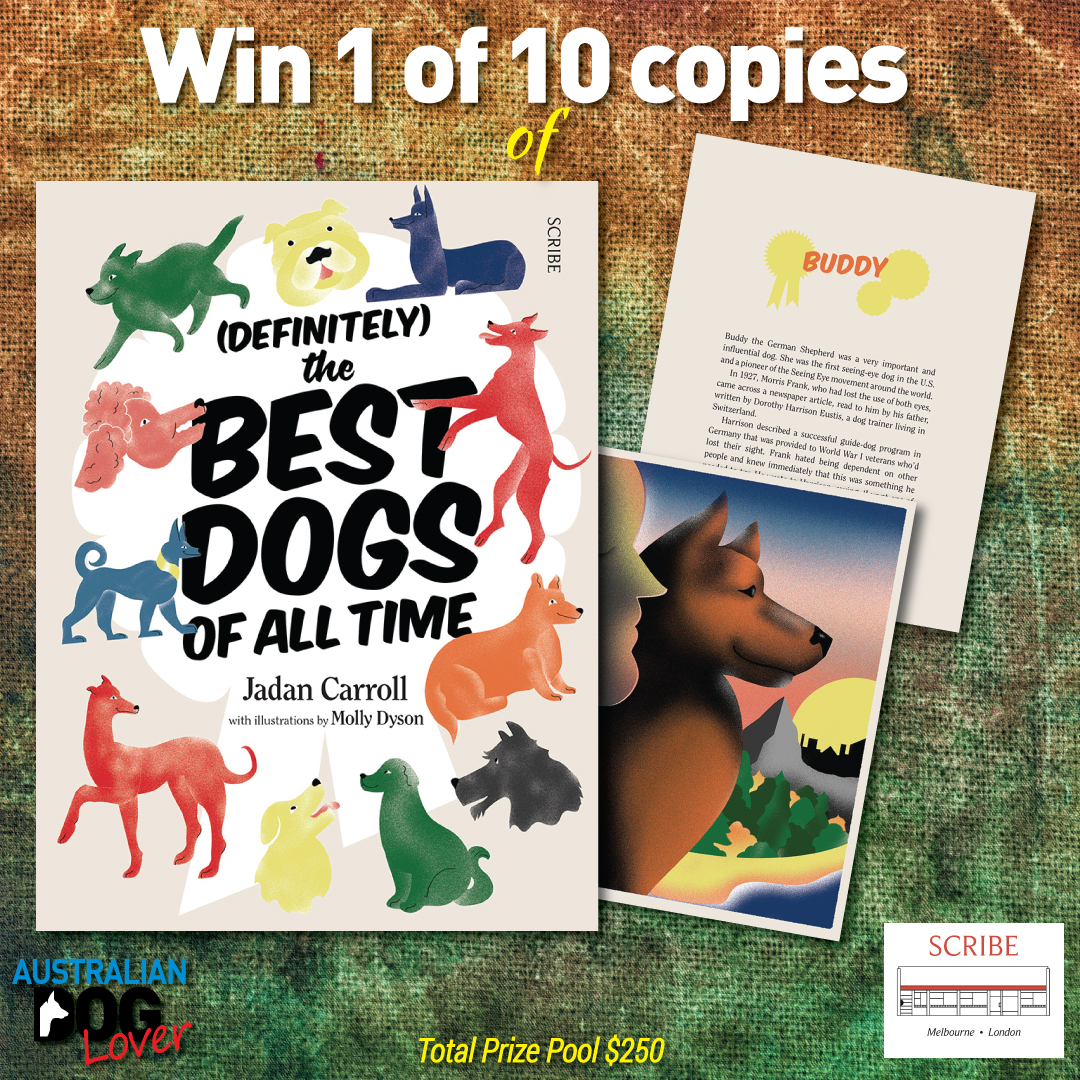 Definitely the Best Dogs of All Time by Jadan Carroll Book Cover from Scribe Publications