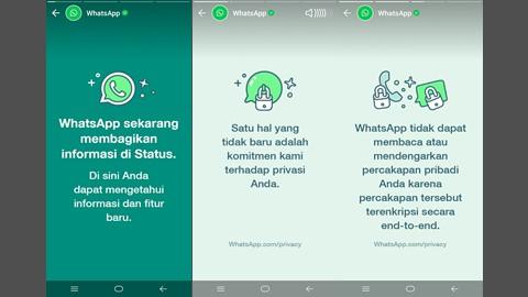 ada status dari whatsapp di whatsapp