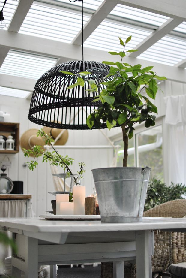 hannashantverk.blogspot.se uterum citronträd enjoy candles