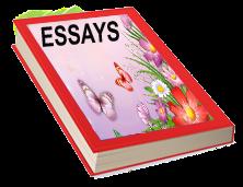 Kids Primary Essays