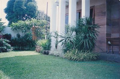 TUKANG TAMAN SURABAYA - TAMAN TOPIS   www.tamanasrisurabaya.com