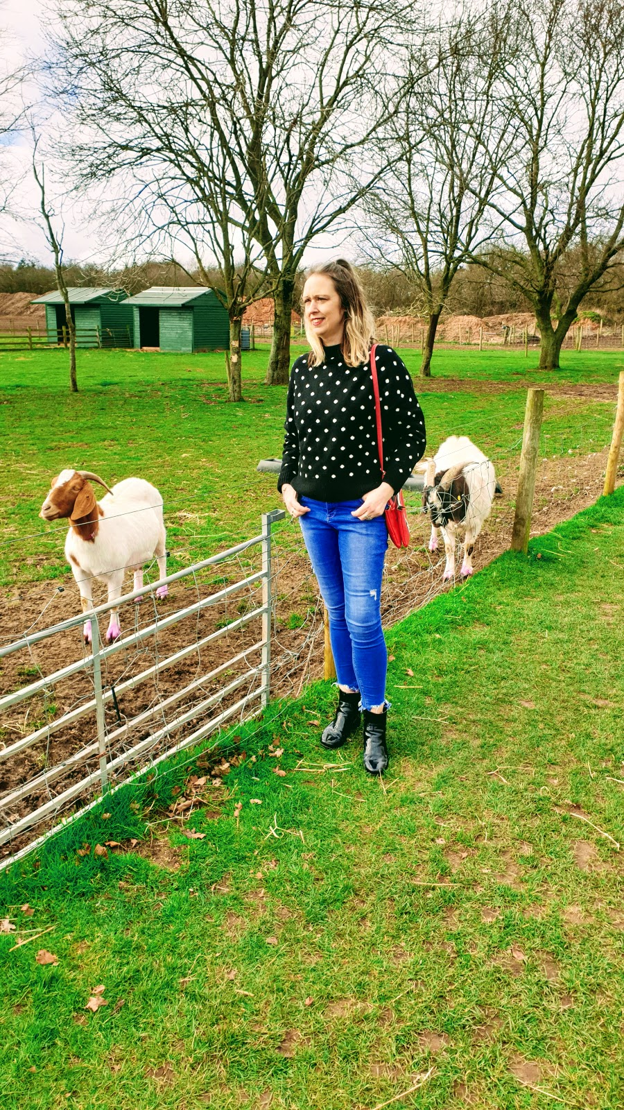 Still Planning Our Trip To The Farm: Over 40 Style Post