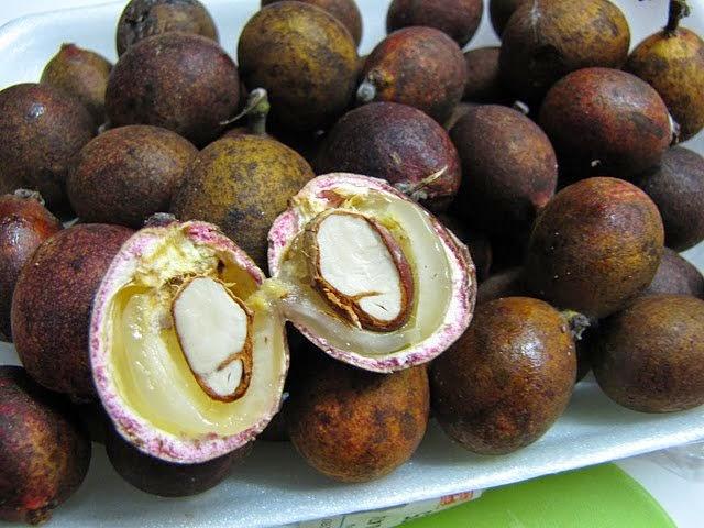 Uniknya Buah Matoa, Gabungan 3 Rasa, Durian,Laici & Rambutan