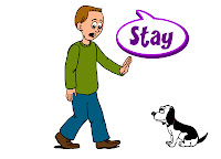 "Como usar o verbo ""stay""?"