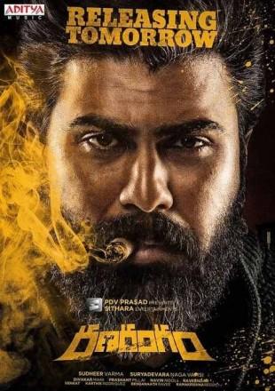 Don Returns: Ranarangam 2019 Full Hindi Dubbed Movie Download HDRip 480p 300Mb