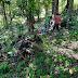 Tanam 200 Pohon Mahoni, Satgas Yonif 742 Jaga Kelestarian Alam Perbatasan