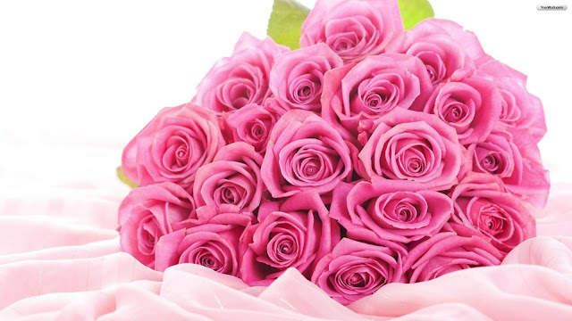 Rose-Day-Wallpaper