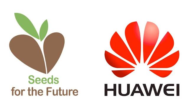 15 estudantes portugueses seleccionados para a edição de 2020 do 'Seeds for the Future'