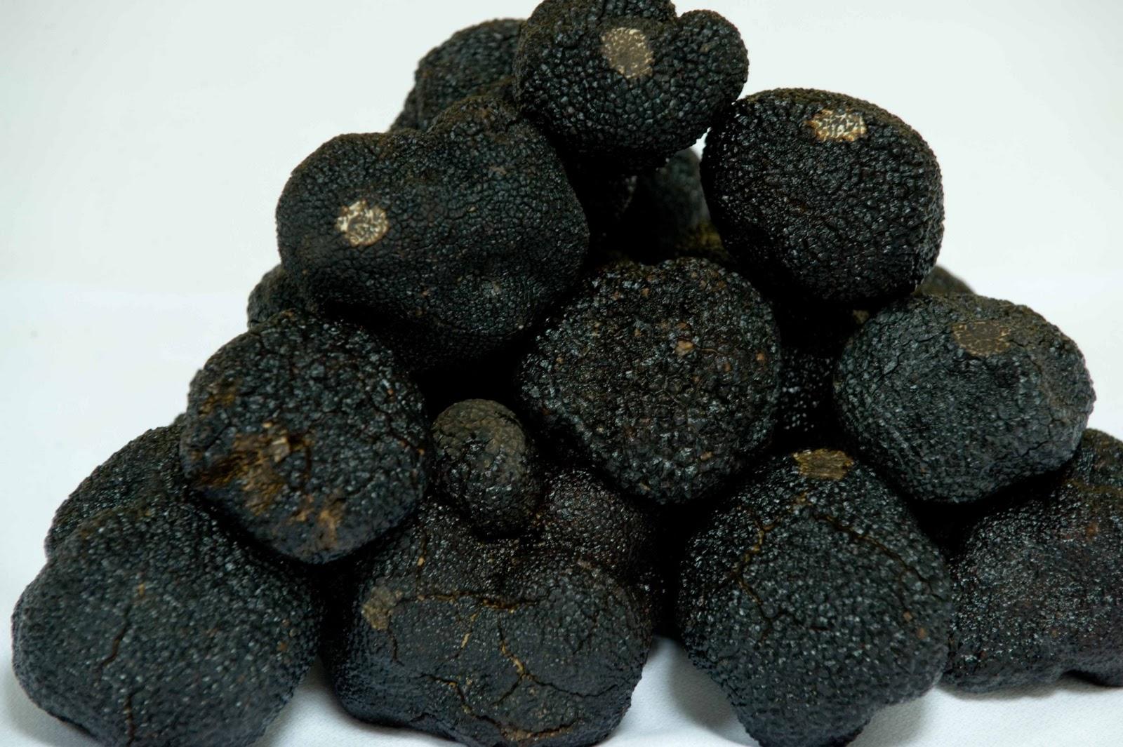 Tuber Melanosporum Black Truffles By Manjares De La Tierra   Truffes  Tr U00dcffles  Trufas  Tartufi