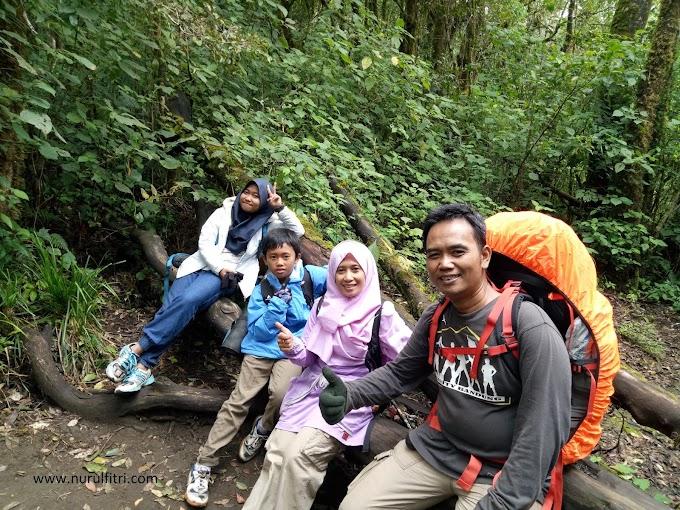 Lestarikan Keindahan Hutan Indonesia Lewat Adopsi Hutan