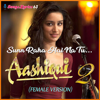 SUNN RAHA HAI (FEMALE) Song Lyrics Aashiqui 2 Movie