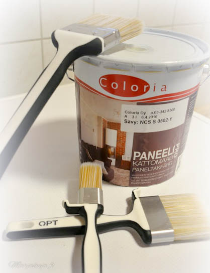 Coloria Paneelipro maali kattopaneelien maalaus valkoiseksi