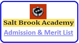 Salt Brook Academy Merit List