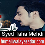 https://www.humaliwalayazadar.com/2019/10/syed-taha-mehdi-nohay-2020.html