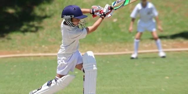 Essay on My Hobby Cricket