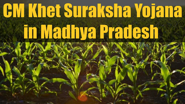 CM Khet Suraksha Yojana in Madhya Pradesh