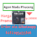 Madu Pria Phuceng Di PuloGadung Jakarta Timur | Hub WA6281295435806