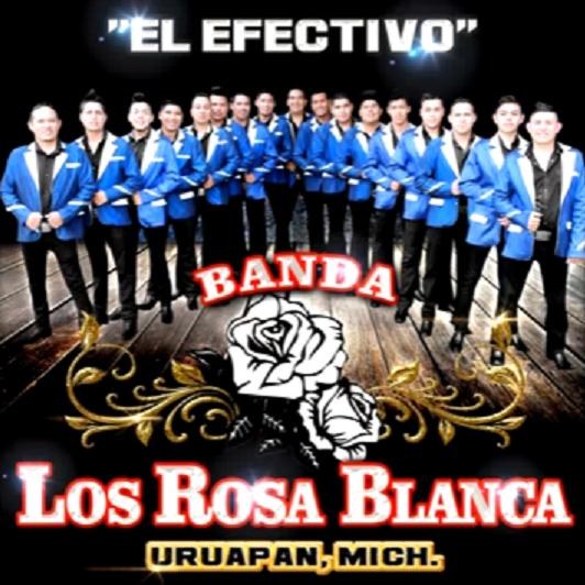 Akua music el efectivo banda los rosa blanca for Blanca romero grupo musical