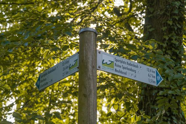 Wäller-Tour Augst | Rundwanderung Westerwaldsteig | Westerwald bei Neuhäusel 03
