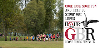 http://www.locallupus.org/get-involved-events/goose-bumps-run/