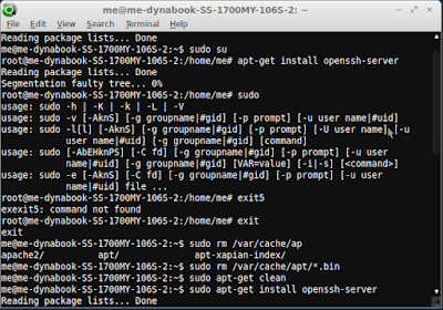 Mengatasi  Error Segmentation Faulty Tree - BlankOn Ubuntu.