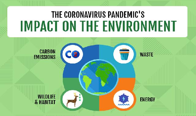 The Coronavirus Pandemic's Impact on the Environment #infographic