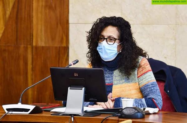 El Cabildo convoca dos sesiones públicas para conocer y debatir el Plan Estratégico de Participación Ciudadana