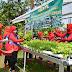 Dukung Ketahanan Pangan di Masa Pandemi , Persit Korem 071/WK Manfaatkan  Lahan Sempit Dengan Sistem Hidroponik