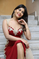 Rachana Smit in Red Deep neck Sleeveless Gown at Idem Deyyam music launch ~ Celebrities Exclusive Galleries 027.JPG