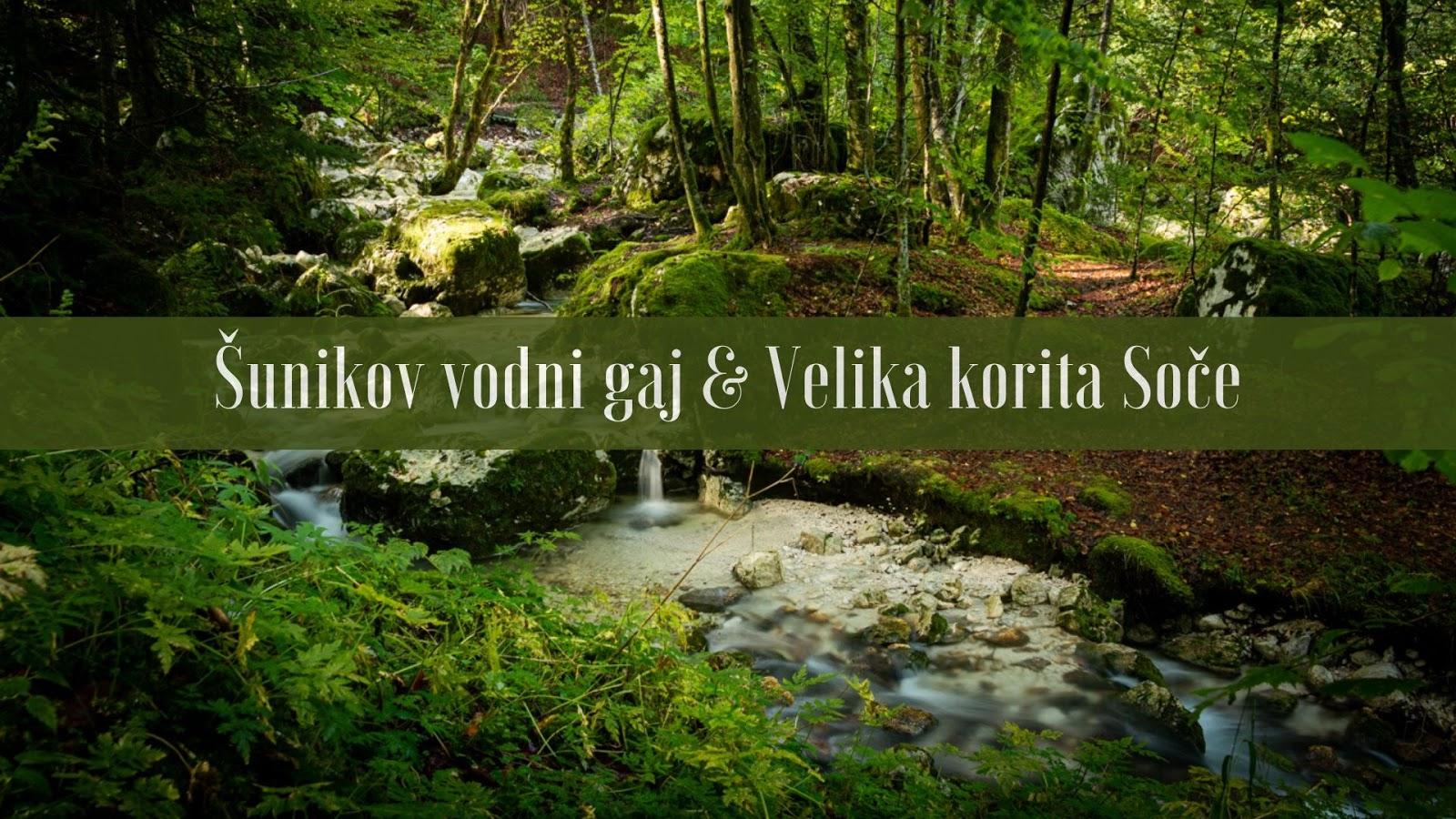 Słowenia Šunikov vodni gaj & Velika korita Soče
