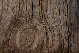Como se realza la veta de la madera