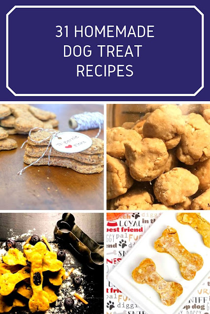 How to make homemade dog treats with 31 easy recipes. These are the best recipes with peanut butter, pumpkin, sweet potato, banana, oatmeal, applesauce, carrot, blueberry, and coconut oil as ingredients. These gourmet healthy treats are simple to make at home. Some are grain free. Includes no bake frozen treats with no flour and yogurt. Two DIY cupcake treat recipes for a birthday party. The best home made dog treats for both chewy and soft. Some dehydrated recipes with chicken meat and cheese. #dogtreat #dog #pets