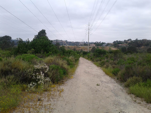 Photo of view from Stonebridge Trail