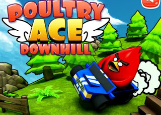 Poultry ACE Downhill Racing Online Games