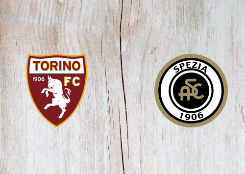 Torino vs Spezia -Highlights 16 January 2021