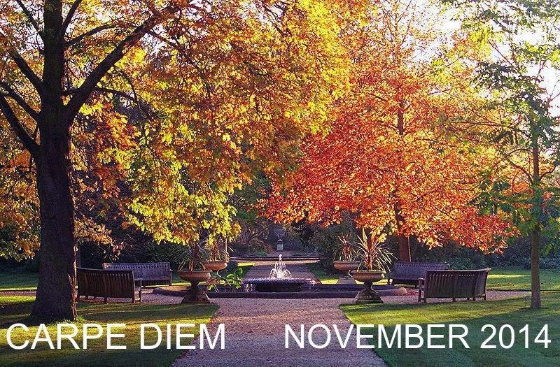 http://chevrefeuillescarpediem.blogspot.in/2014/11/carpe-diem-599-yellow-colored-valerian.html