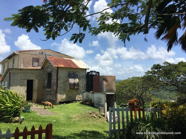 building at Fort King George in Scarborough, Tobago