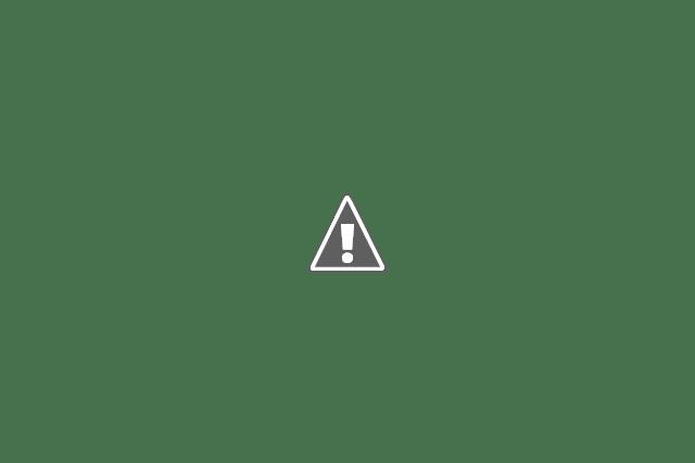 Ett glas med pengar som det växer blad ur.