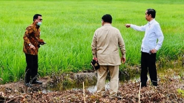 Jokowi Mungkin Menguji Prabowo Jadi <i>Leading Food Estate</i> karena Sering Bicara Kedaulatan Pangan Saat Pilpres