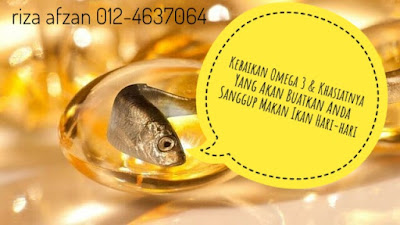 Kebaikan omega3