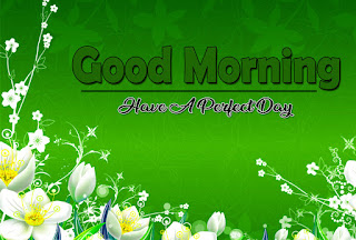New Good Morning 4k Full HD Images Download For Daily%2B33